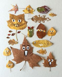 Check out these ideas for turning those beautiful fallen leaves from outdoors into fun art projects!
