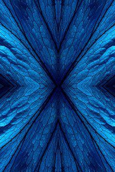 blue hues – Just another WordPress site Blue Dream, Love Blue, Blue And White, Azul Indigo, Bleu Indigo, Azul Pantone, Pantone Color, Image Bleu, Le Grand Bleu