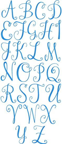 Machine embroidery font called Janda Mono Alphabet.  I like in particular the curly flips at the end of each letter.