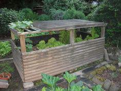 Die 32 Besten Bilder Von Hochbeete Backyard Patio Edible Garden