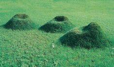 """""""Terra!"""" – Nucleo (Andrea Sanna + Piergiorgio Robino) - 2000 120x120x57H cm Matrice en carton que l'on monte soi-même, que l'on recouvre de terre, puis où nous semons de l'herbe."""