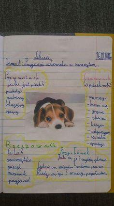 Grammar, Montessori, Projects To Try, School, Literatura
