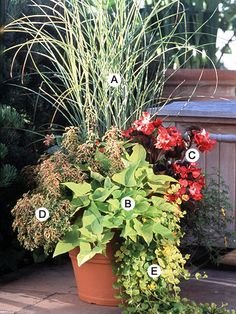gorgeous container garden idea...we need more ideas for all year long interest.