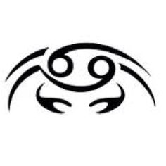 tattoo on Pinterest | Cancer Crab Tattoo, Turtle Tattoos and Crab ...