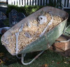 Halloween Skeletons & Skeleton Decorations - Halloween Skulls - Party City