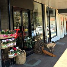 Flowers on Argyle street flowers Moss Vale Southern Highlands NSW