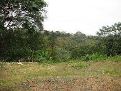 Aquiles Rojas - Real Estate Advisor: Terreno en Jarabacoa - 27345 - US$411,800