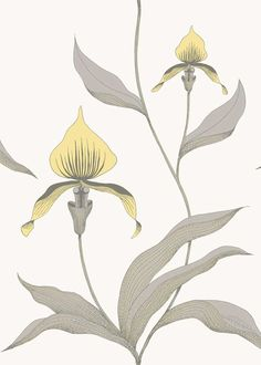 Wallpaper 239510057 Orchid by Cole and Son