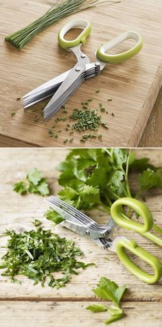 Alternative Gardning cheap 5 blade herb scissors