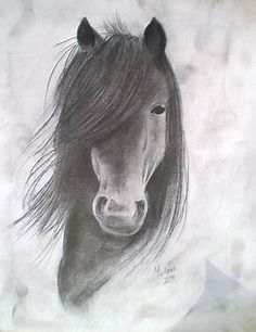 Image result for Scetchings Free Beautiful Horses