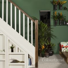 Jungle Adventure Bring the outdoors in with Jungle Adventure 0739 by Happy St. Patrick's Day. Storing Paint, Interior Styling, House Styles, Colourtrend Paint, Color Trends, Trending Paint Colors, Hallway Colours, Colorful Interiors, House Interior
