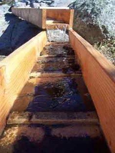 Gold Mine tours and Gold Rush field trips, Julian California