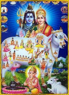 Hindu god n goddesses Shiva Parvati Images, Shiva Hindu, Shiva Art, Shiva Shakti, Hindu Deities, Hindu Art, Krishna, Indian Goddess, Goddess Lakshmi