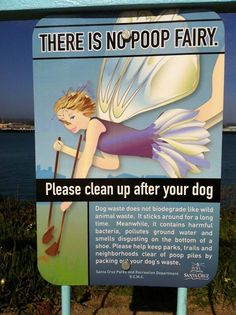 There's no such thing as the poop fairy