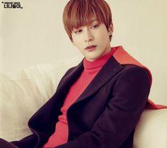 Jaehyo Freeze, Jaehyo Block B, Bbc, King Bee, B Bomb, Fandom, Rapper, Bias Wrecker, People