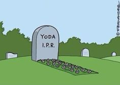 Was wir über Yodas Spezies wissen: http://www.jedipedia.net/wiki/Yodas_Spezies