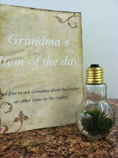 Today's item is this most adorable mini terrarium in a light bulb shaped bottle. Made by Janice Lane of Inspired Laneon Etsy, this item s...