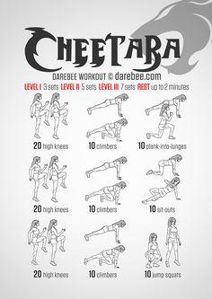 Cheetara Workout                                                                                                                                                                                 More