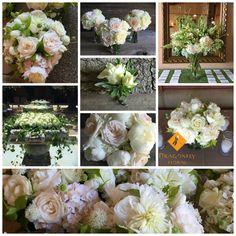 #dragonflyfloral #mayacamacountryclubwedding #junepeonies June Events, Peonies, Wedding Events, Floral, Flowers, Flower