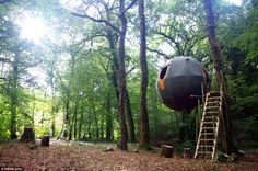 Hanging around:  Suspended from three trees and accessible via a narrow wooden staircase hidden among the trees, the Lost Meadow Tree Tent i...