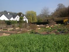 New Garden taking shape at The Bell