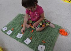 Montessori Counting Exercise