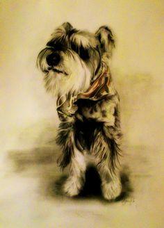 Marcel Gallik, drawing pencil, paper, A3 Pet Treats, Marcel, A3, Pencil Drawings, My Arts, Foods, Paper, Animals, Printmaking