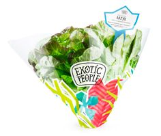 Corporate identity and packaging for Exotic People products by Art. Lebedev. #vegetable #packaging