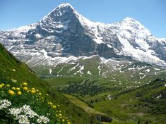Eiger's North Face, Switzerland. With a height of 5,900 ft, thes is the biggest north face in the Alps. First successfully climbed in 1938, there have been 64 climbers who have died climbing since 1935. The Germans have refer to it as Mordwand for murder(ous) wall, instead of by it's proper name, Nordwand meaning North Wall.