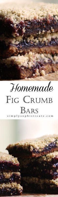 Homemade Fig Crumb Bars