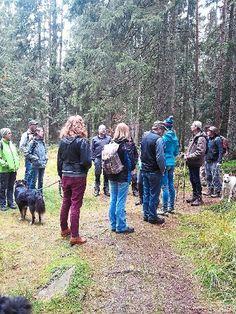 Um die Entwicklung des Waldes ging es unter anderem bei der Führung mit Jörg Ziegler.   Foto: Freundeskreis Pro Nationalpark Foto: Schwarzwälder-Bote