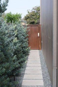 Straight Path Concrete Walkway Z Freedman Landscape Design Venice, CA Modern Landscape Design, House Landscape, Contemporary Landscape, Traditional Landscape, Concrete Walkway, Paver Walkway, Walkway Ideas, Backyard Walkway, Fence Ideas