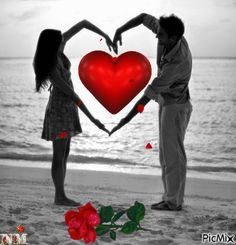Add text to Animated gif image Heart Pictures, Love Pictures, Heart Pics, Love Is Sweet, Cute Love, Photo Zen, Color Splash, Color Pop, Animiertes Gif