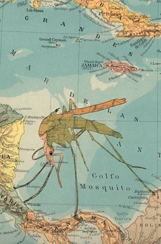 Malaria Map Old Maps, Mother Earth, Something To Do, Concept Art, Infographic, Globes, World, Gin, Illustration