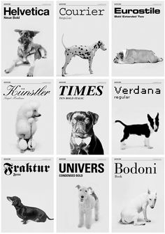 Grafisches Büro has created a series of images that playfully imagines various breeds of dogs as typefaces.