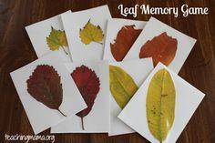 8 Leaf Activities for Preschoolers | Teaching MamaTeaching Mama