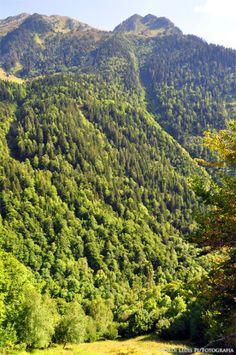 Les Muntanyes i els Paisatges de Catalunya: El riu i la vall de Varradòs amb el Salt del Pish