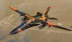 F-111E Aardvark (Tiziano Gollini)
