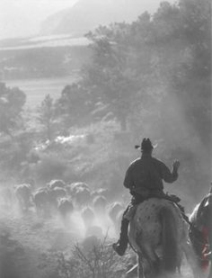 cattle drive jake-s-world Cowboy Horse, Cowboy And Cowgirl, Westerns, Cattle Drive, Ledoux, Real Cowboys, Into The West, Western Art, Western Quotes