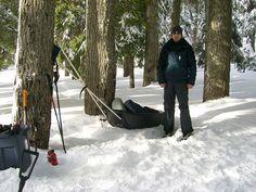 Gear Sled at Twin Lakes