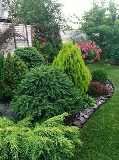 55 Popular Modern Front Yard Landscaping Ideas These trendy Home Decor ideas would gain you amazing compliments. Check out our gallery for more ideas these are trendy this year. Evergreen Landscape, Evergreen Garden, Evergreen Shrubs, Landscaping Along Fence, Outdoor Landscaping, Landscaping Ideas, Modern Front Yard, Front Yard Design, Plantation