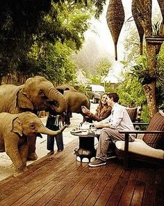 Safari love -- don't know where this is.