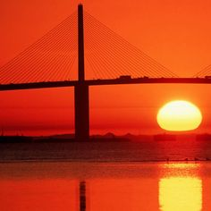 Learn the history behind the breathtaking Sunshine Skyway bridge, a local interest and landmark with an interesting story to tell. Click on the photo to read more...