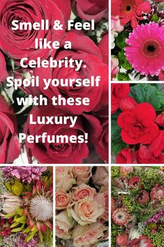 Yvés Săint Lauŕent perfumes and luxury gifts Saint Laurent Perfume, Yves Saint Laurent, Spoil Yourself, Best Perfume, Luxury Gifts, Thats Not My