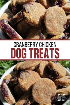 Cranberry Chicken Dog Dog Treat Recipes, Fruit Recipes, Chicken Recipes, Homemade Dog Treats, Healthy Dog Treats, Dog Grooming Shop, Cranberry Chicken, Chicken For Dogs, Biscuit Recipe