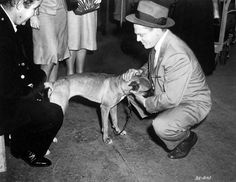 James Cagney and a canine companion on the set of The Time of Your Life 1948