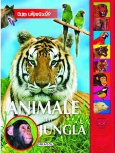 Animale din jungla – Varsta: 1+; O plimbare prin jungla ne face cunostinta cu multe animale salbatice indragite: leul, ursul, lupul, tigrul sau cimpanzeul. O serie de carti pline de culoare si de sunet, bebelusul poate invata cum arata animalele si ce sunete scot acestea. Tapas, Ursula, Petra, Baby, Products, Libros, Baby Humor, Infant, Babies