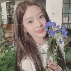 Wiz*one — Kim Minju Fandom, Yu Jin, Japanese Girl Group, Kim Min, Korean Celebrities, The Wiz, Ulzzang Girl, Kpop Girls, Korean Girl