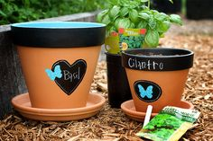 Chalkboard decor is huge right now. These DIY chalkboard flower pots create cute designs for your plants without the inflated price tag. Painted Clay Pots, Painted Flower Pots, Hand Painted, Pots D'argile, Plant Pots, Herb Pots, Terracotta Flower Pots, Chalkboard Decor, Chalkboard Labels