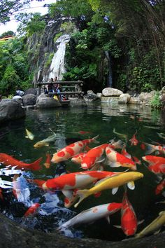 Sunway – Amazing Pictures - Amazing Travel Pictures with Maps for All Around the World